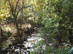 Ashland Creek 2