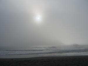 Ocean Mist -1